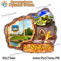 "Магнит ""Зарайск 2-х ур._01"""