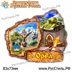 "Магнит ""Зарайск 2-х ур._04"""