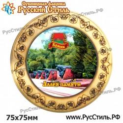 """Магнит """"Брянск Закатной_10"""""""