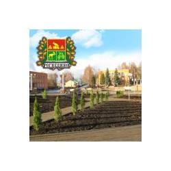 """Магнит """"Льгов Береста_03"""""""