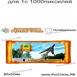 "Тарелка 100 ""Новосибирск_19"""