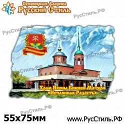 "Магнит ""Воронеж Фотокристалл-бутылка_03"""