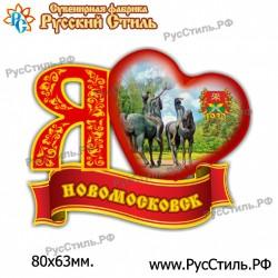 "Магнит ""Торжок  2-х ур._03"""