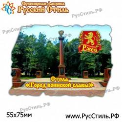 "Магнит ""Воронеж 2-х ур._05"""
