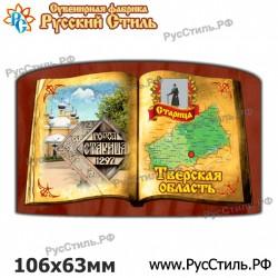 """Магнит """"Воронеж Винил_05"""""""