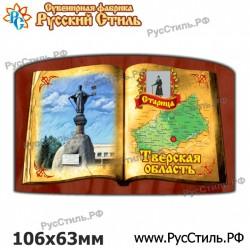 """Магнит """"Воронеж Винил_07"""""""