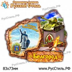 "Магнит ""Мценск 2-х ур._11"""