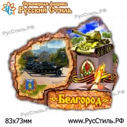 "Магнит ""Мценск 2-х ур._12"""