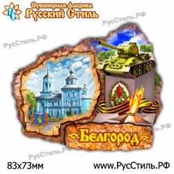 "Магнит ""Мценск 2-х ур._13"""