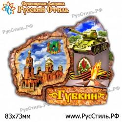 "Магнит ""Мценск АвтоНомер картинка_01"""