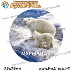 "Магнит ""Алексин 2-х ур._02"""