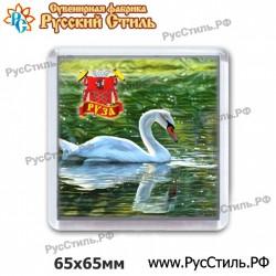 """Магнит """"Донской АвтоНомер_01"""""""