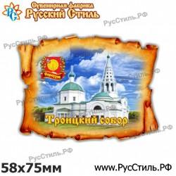 """Магнит """"Новомосковск 2-х ур._02"""""""