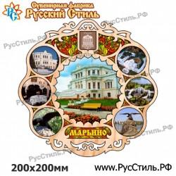 """Магнит """"Рязань Винил_01"""""""