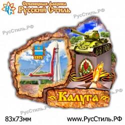 """Магнит """"Тамбов 3-х ур._04"""""""